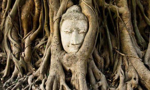 仏教 用語